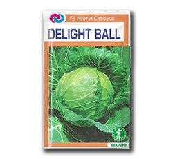 Seminte de varza alba Delight Ball F1 Mikado