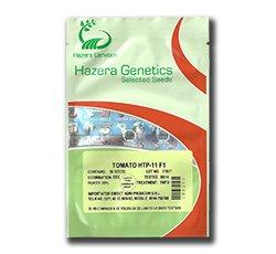 Seminte de tomate HTP-11 F1