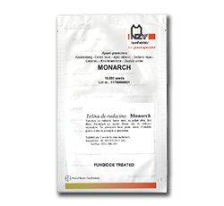 Seminte de telina Monarch F1