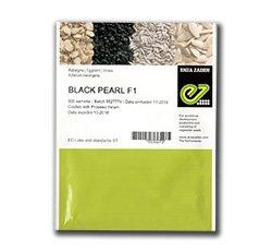 Seminte de vinete Black Pearl F1